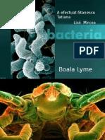 Boala Lyme