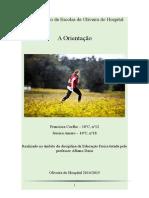 trabalho_ef_orientacao.docx
