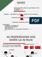 06_gases1 (1)