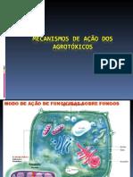 Mecanismos de Ação Dos Agrotóxicos