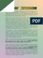 SIBF Info-Reunión Gerente C
