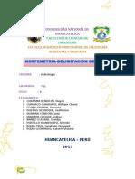 HIDROLOGÍA-TRABAJO.docx