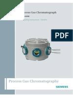 Process Gas Cromatograph