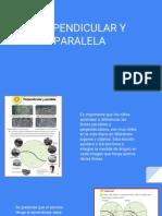Tomo V Vol. 1 Lineas Paralelas y perpendiculares