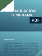 estimulacion-temprana-1201131305446462-3