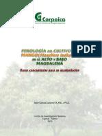 Fenologia Para El Cultivo de Mango en El Alto y Bajo Magdalena