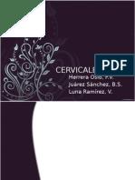 Cervical Es