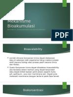 Mekanisme Bioakumulasi