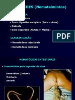 Aula_Nematoídes