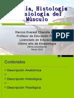 Fisiología neuromuscular