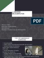 Bionomik an. Subpictus Fix