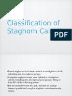 Staghorn Calculli