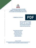 correias e polias formatado.doc
