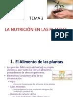 TEMA 2 El Alimento de Las Plantas