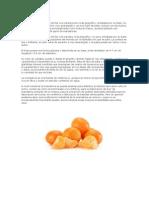 Trabajo Economia Mandarinas