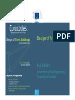 05 Eurocodes Steel Workshop SIMOES
