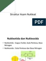 Struktur Asam Nukleat - Pangiastika