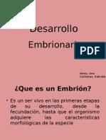 Desarrollo Embrionario,Biologia 3