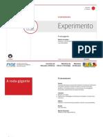 A Roda Gigante o Experimento