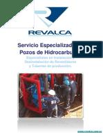 servicio pozo.pdf