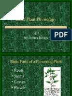 Basic Plant Physiology