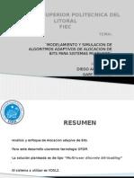 MODELAMIENTO Y SIMULACION DE ALGORITMOS ADAPTIVOS DE ALOCACION DE BITS PARA SISTEMAS MULTIUSER¨