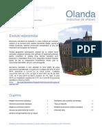 Indrumar_afaceri_Olanda