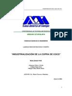 coco.pdf