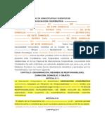 Acta Constitutiva y Estatutos 2011, (Modelo)