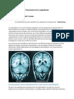 Neurociencia de la esquizofrenia Blog 1.docx
