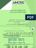 Aplicaciones Del Calculo Matricial.
