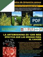Artemisia Annua en Mexico