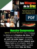 Los Milagros de La Cruz