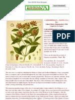 Clove USD1926 Picture Monograph
