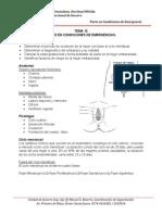 Tema 12 Parto en Condiciones de Emergencia