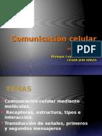 9_-Comunicacion-celular-Biologia-12-10-11