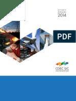 Reporte Anual CDECSIC Correcciones
