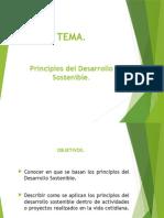 Principios Del Desarrollo Sostenible.