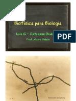 biof_biol_aula06