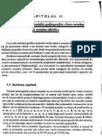 capitolul-2.pdf