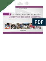 mero mero perfil parametro e indicadores..pdf