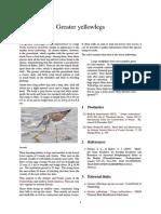 Greater yellowlegs.pdf