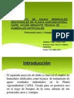 Humedales Artificiales para Tratamiento de Aguas Residuales Industriales.pptx