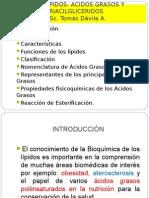 Lipidos Acidos Grasos Tomas 2014 (2)
