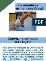 A+º+úo dos membros superiores no nado Crawl