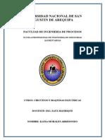 TRABAJO DE ENVASE-CIRCUITOS.docx
