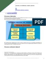 Tipos Procesos Derecho Laboral Peruano