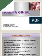 Trauma Ginjal