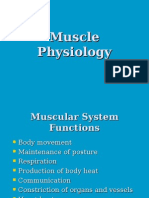 Muscle Physiology Review