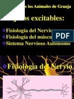 PPT_FISIOLOGIA_DEL_NERVIO